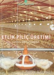 Etlik Piliç Üretimi