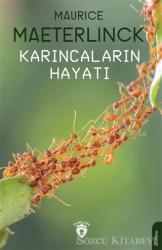 Karıncaların Hayatı