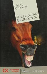 Susurluk'tan Ergenekon'a