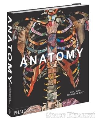 Kolektif - Anatomy | Sözcü Kitabevi