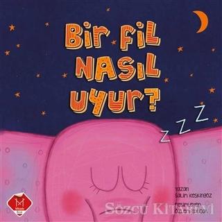 Bir Fil Nasıl Uyur?