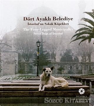 Dört Ayaklı Belediye / The Four-Legged Municipality Street Dogs of İstanbul