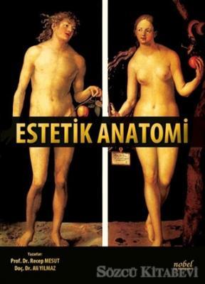 Estetik Anatomi