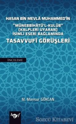 Hasan Bin Mevla Muhammed'in Tasavvufi Görüşleri