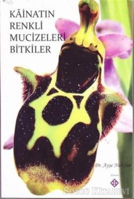 Kainatın Renkli Mucizeleri Bitkiler
