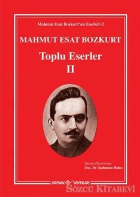 Mahmut Esat Bozkurt - Toplu Eserler 2