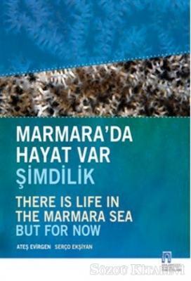 Marmara'da Hayat Var Şimdilik