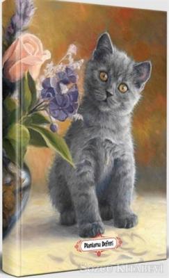Masum Kedi - Planlama Defteri