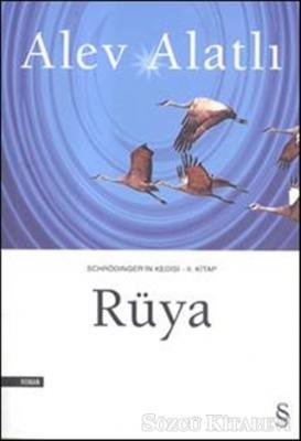 Schrödinger'in Kedisi - 2. Kitap - Rüya