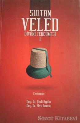 Sultan Veled Divanı Tercümesi Cilt 1
