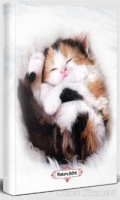 Uykucu Kedi - Planlama Defteri